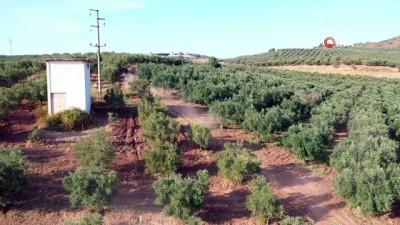 Dört mevsim müdahale için arazi aracı