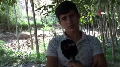 Sakarya'da saldırıya uğrayan fındık işçileri: 'Yöre halkıyla aramız çok iyiydi sadece işverenlerimiz sıkıntılıydı'