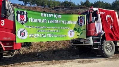 Hatay'ın Belen ilçesinde yangında zarar gören alana Beşiktaş Kulübü yöneticileri fidan dikti