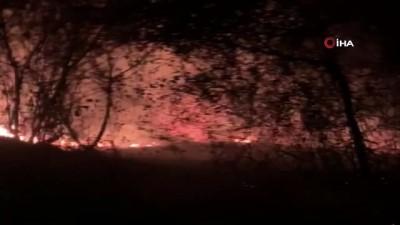 Kemalpaşa'da korkutan örtü yangını