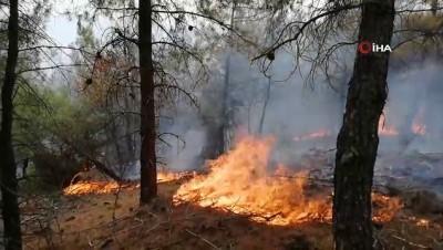 10 dönümlük ormanlık alan yangında zarar gördü