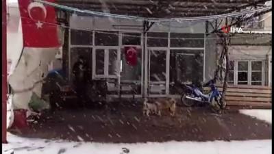 Bozdağ'da kar sevinci