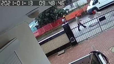 televizyon -  Balkondan masa çalan hırsıza köpek bile baktı kaldı...O anlar kamerada