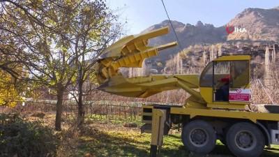 Türkiye'nin en fazla ağaç taşıma işlemi Yusufeli yeni yerleşim yerinde gerçekleşti