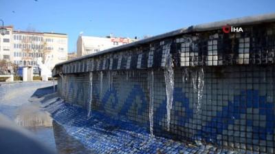 - Tekirdağ'ı buz kesti - Süs havuzları dondu