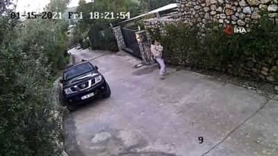 Yaşananlar kamerada... Köpeğin saldırısına uğrayarak yaralanan genç kızın annesi köpeği ezmekle suçlandı