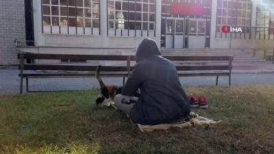 Minik Talha'dan gönülleri ısıtan davranış...Cuma namazına gittiği camide üşüyen kediyi kucağına alarak ısıttı