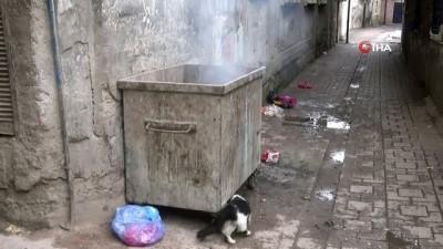 Diyarbakır'da vahşet... Yeni doğmuş bebeğin cansız bedeni çöp konteynırında bulundu