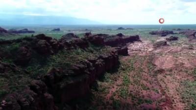 habitat -  - Arjantin'den yeni Mars projesi