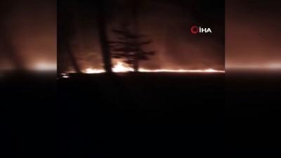 Adana'nı Pozantı ilçesinde ormanlık alanda yangın