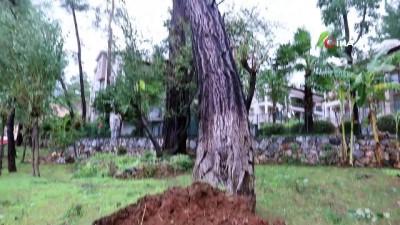 - Marmaris'te fırtına sonrası çalışmalar sürüyor