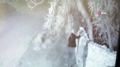 tutuklama talebi -  - Hırsızlık anları kamerada...JASAT hayvan hırsızlarını Gürcistan'a kaçarken yakaladı