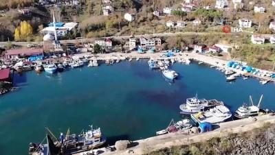 - Yasak öncesi son hamsiler tezgahlarda - 10 günlük avlanma yasağı getirilen hamsiler, son gün tezgahlarda 20 liradan satılıyor