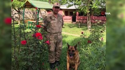 Jandarma Asayişin 91 yaşındaki köpeği emekli oluyor