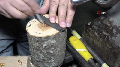 ceviz agaci -  Kurumuş ağaçları sanat eserine dönüştürüyor