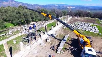 tanri - MUĞLA - Lagina Hekate Kutsal Alanı'nda 2 bin 50 yıllık sütunlar yeniden yükseliyor