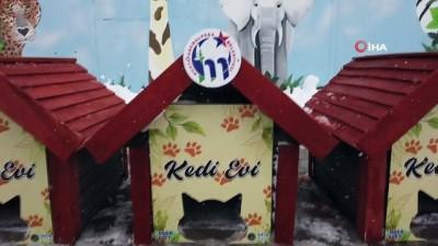 sokak hayvanlari -  Mustafakemalpaşa kedi evleriyle donatıldı