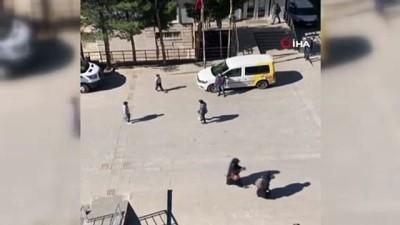 bag kur - Çınar Kaymakamı Sinem Büyüknalçacı çocuklarla futbol oynadı