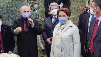 peygamber -  Covid-19 ile mücadele hayatını kaybeden 382 sağlık çalışanı anısına zeytin ağacı dikildi