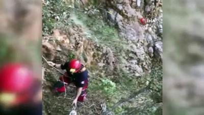hayvan -  Kayalıklarda mahsur kalan keçi kurtarıldı