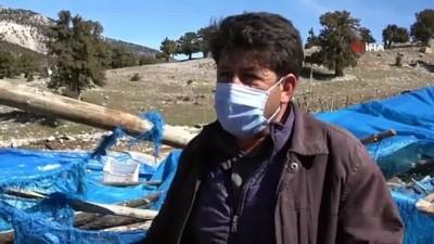 hasar tespit -  Mersin'de şiddetli rüzgarın yol açtığı hasarın yaraları sarılıyor