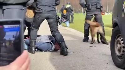atli polis -  - Hollanda'da genel seçim öncesi hükümet karşıtı protesto