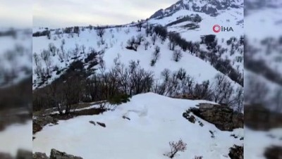- Siirt'te PKK'lı teröristlerin tuzağı son anda önlendi