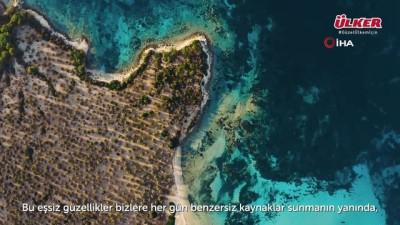 """- Ülker'den """"Güzel Ülkem Doğa Bize Emanet"""" video serisi"""