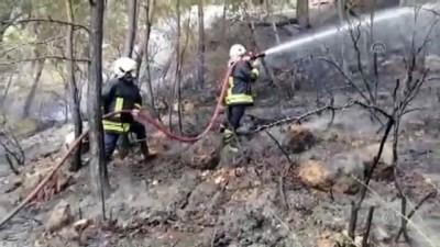 yangina mudahale - MUĞLA - Fethiye'de çıkan orman yangını söndürüldü