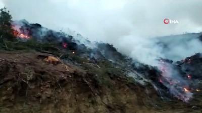 - Bucak'ta ormanlık alanda yangın kısa sürede söndürüldü