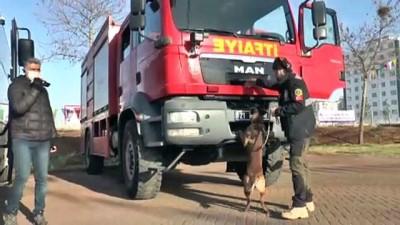 Diyarbakır'da nevruz etkinliğinin yapılacağı alanda polis ekipleri denetim yaptı