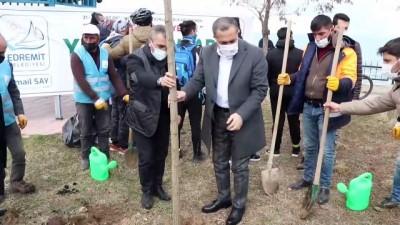 katliam - VAN - Mesire alanında kesilen ağaçların yerine yenileri dikildi
