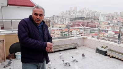 katliam - ANKARA - Kovid-19 geçirdiği süreçte güvercinleriyle moral buldu