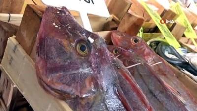 bagisiklik sistemi -  Balıkçılar satışlardan memnun, fiyatlardan memnun değil