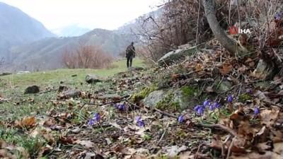 iran -  Doğa severlerden Nevruz Bayramında doğa yürüyüşü