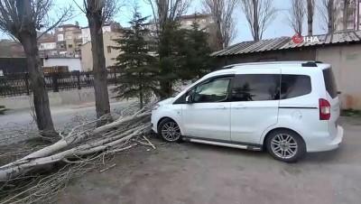Şiddetli fırtınada ağaç otomobilin üzerine devrildi
