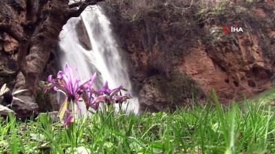 Şırnak'ta sağanak yağışın ardından şelaleler oluştu