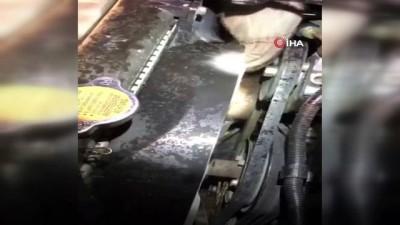 Aracın motor bölümüne sıkışan kedi kurtarıldı