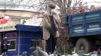 Valilikten izin alan vatandaş, kısıtlama günlerinde bile güvercinlere yem veriyor