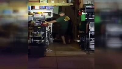 - Florida'da evin garajında timsah bulundu