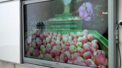 dunya pazari -  Niğde elması dünya pazarında tanıtılacak