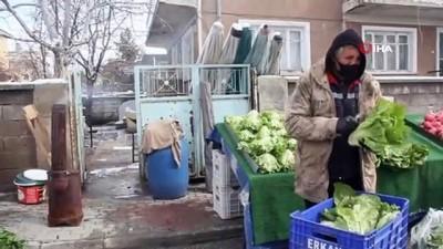 Doğu'da soğuk hava: Erzincan ve Iğdır için zirai don uyarısı
