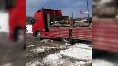Tır şoförü, kar yağışında aç kalan tilkiyi bisküvi ile besledi