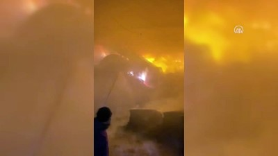 KIRKLARELİ - Hayvan çiftliğinde çıkan yangına müdahale ediliyor
