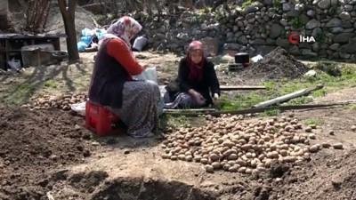 60 hanenin küle döndüğü köyde evleri yanan komşularına evlerini açtılar