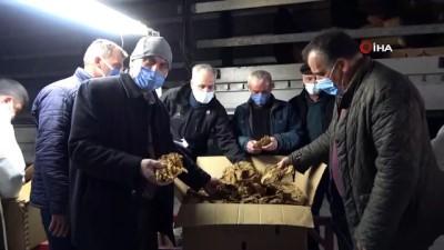 milletvekili -  Bafra'da tütün alımları başladı