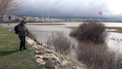 yagan -  Kura nehri taştı, tarım arazileri sular altında kaldı