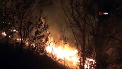 Muğla'da iki ayrı noktada orman yangını