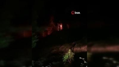 Ardeşen'de ormanlık alanda yangın