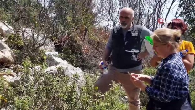 dinamit -  Defineciler binlerce yıllık tarihi dinamit kullanarak talan ediyor